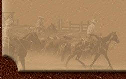 Annual Bar U Ranch Rodeo